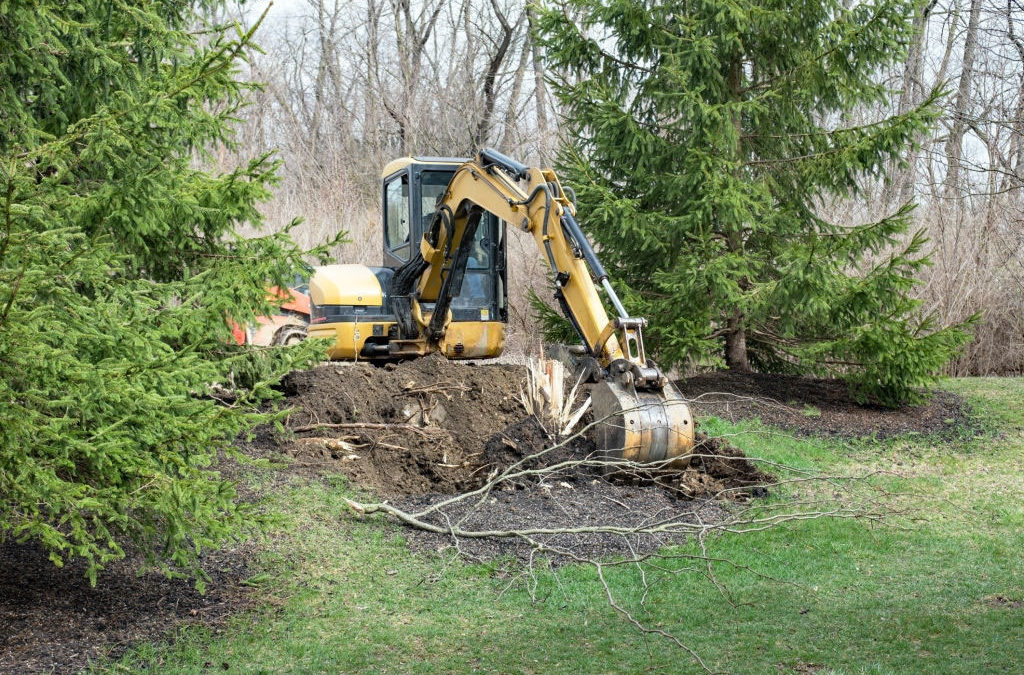 What Are the Types of Tree Removal Methods?